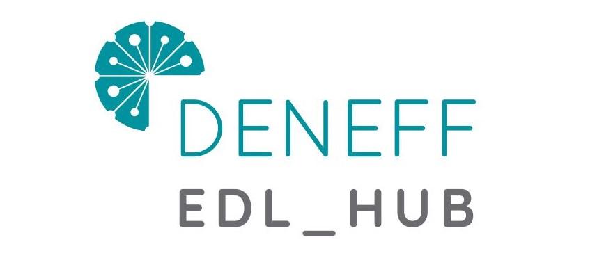 Logo DENEFF EDL HUB